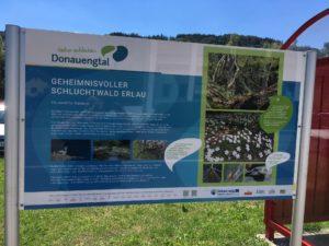 """Foto RMOÖ: Beispiel für Thementafel """"Natur entdecken – Donauengtal"""